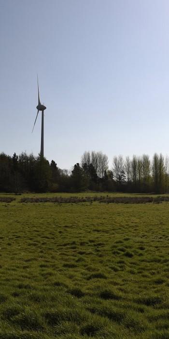 Coleraine Enterprise Zone: the green field site