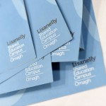 Lisanelly - Meet the Buyer - Leaflet