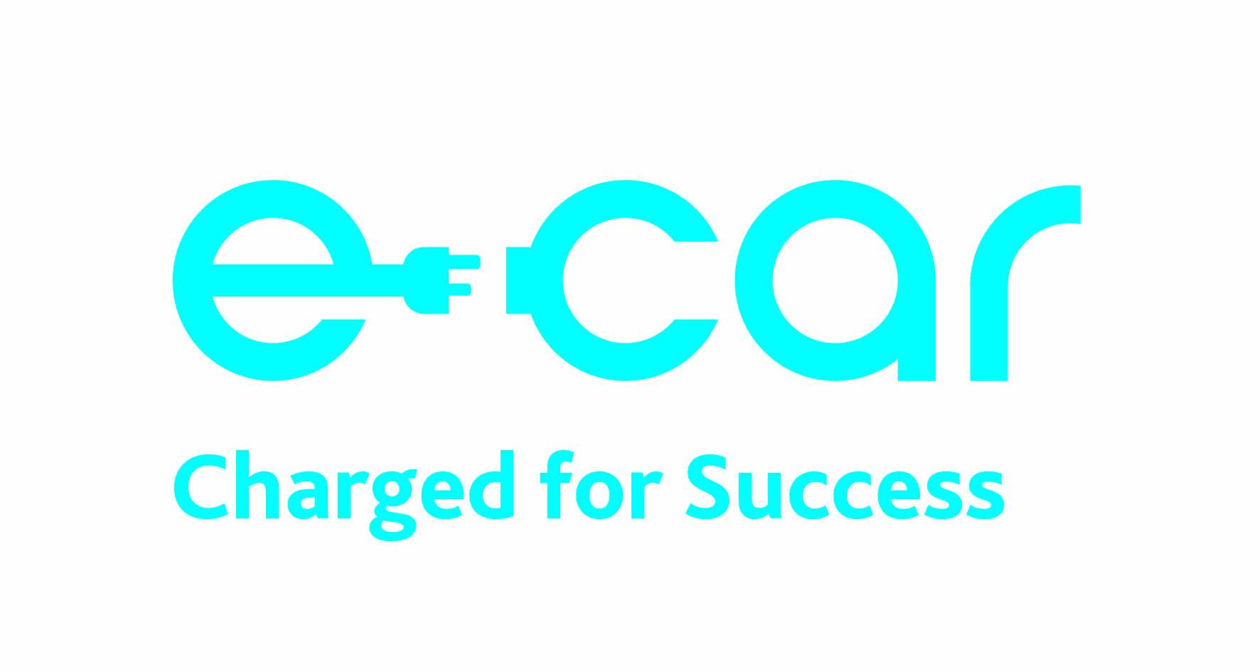 Electric Cars Ecarni Strategic Investment Board