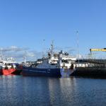 Pelagic vessels in Belfast